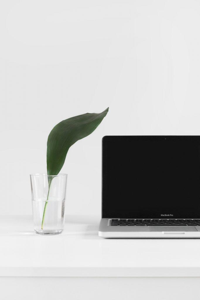 Laptop Virtual Assistants